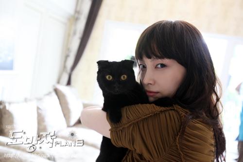 韓劇<城市英雄/逃亡者>劇情&人物介紹(Rain主演) 2